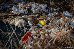 residuos basura abandonada ensuciando el medio ambiente