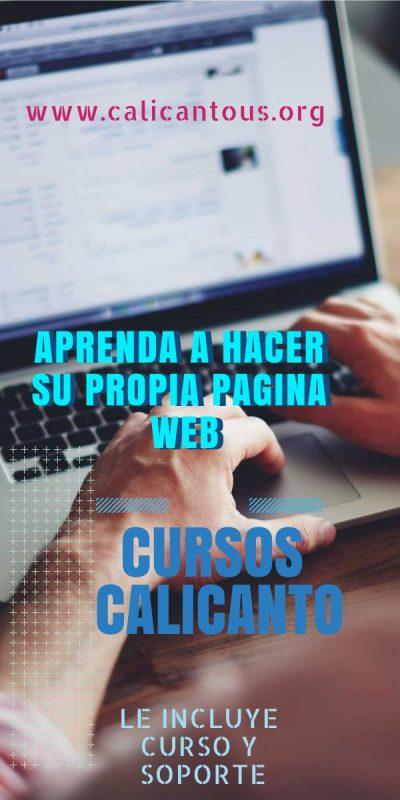 Curso Desarrollo de Páginas Web